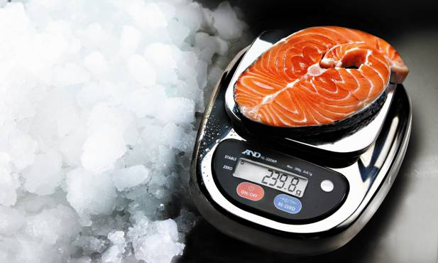 HL-WP Professional Food Scales - From only $600 (ex GST)!